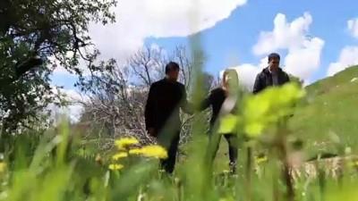 eylem plani - Endemik çiçeklerin kadim kent Diyarbakır'da görsel şöleni