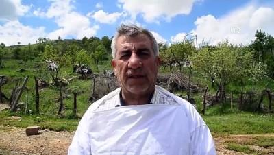 Karakovan balı üreticilerinin yayla hazırlığı - BİTLİS