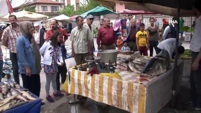 rekor -  Fırat Nehri'nde oltaya 83 kiloluk dev Turna balığı takıldı