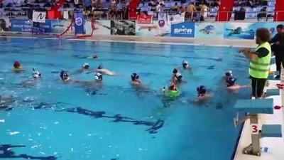 sayilar - Sualtı Hokeyi Büyükler Türkiye Şampiyonası - TEKİRDAĞ