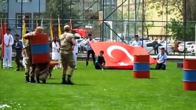 sivil toplum - 19 Mayıs Atatürk'ü Anma Gençlik ve Spor Bayramı -Köpek gösterisi - NEVŞEHİR