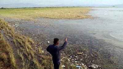 Irak'ta 60 bin dönümlük tarım arazisi sular altına kaldı - SÜLEYMANİYE