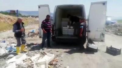 Bin 800 kilo kaçak balık ele geçirildi - KAHRAMANMARAŞ