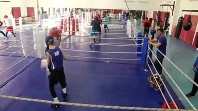 boksor - Milli boksörler, Avrupa'yı sallamak istiyor - KASTAMONU