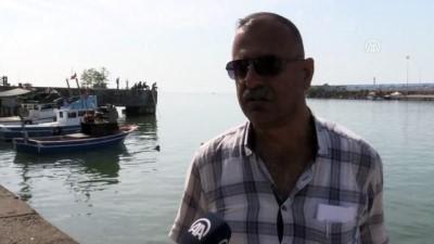 Kıyı balıkçıları rotalarını lüfer ve çinekopa çevirdi - DÜZCE