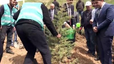 Bitlis'te 'Adalet Ormanı' oluşturuldu - BİTLİS