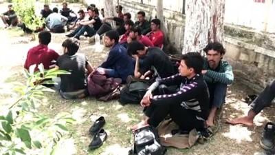 57 düzensiz göçmen yakalandı - ADANA