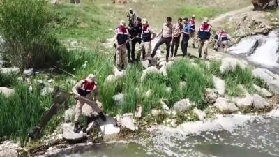 jandarma - Jandarma ve polis inci kefali için seferber oldu (1) - VAN