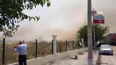 Türkiye-Suriye sınırındaki mayınlı alanda yangın çıktı