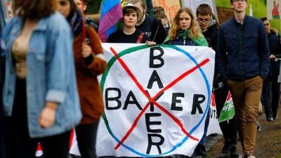 tarim - Glifosat içeren tarım ilaçları üreticisi Monsanto-Bayer'e karşı dünya çapında tepki