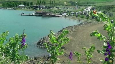 Demirözü Barajı'na yoğun ilgi