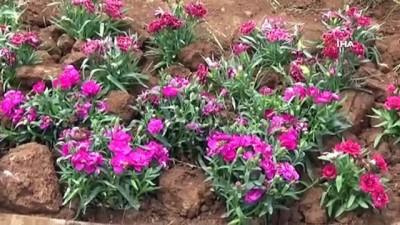 Muş Belediyesi kenti çiçeklerle süslüyor