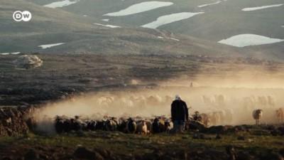 30 yıllık çobanın hayali: Çocuklarım okusun