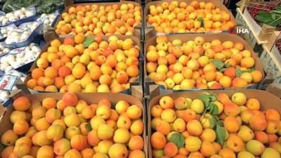Başkentliler en çok domates ve portakal tüketti