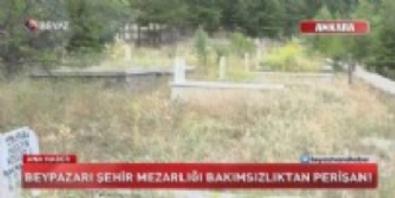 mansur yavas - Mezarlar otlar arasında kaybolmuş!