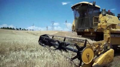 gubre - Devlet desteğiyle ekmeğini buğdaydan çıkarıyor - SİİRT