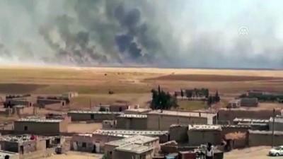 YPG/PKK işgalindeki bölgelerde yangın tehdidi sürüyor - KAMIŞLI