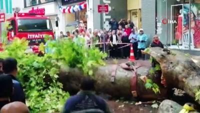 Fırtına asırlık çınar ağacını devirdi: 1 yaralı