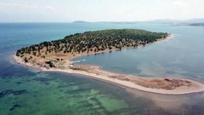 yatirimci - Kuzey Ege'de 105 milyon liraya satılık ada - BALIKESİR