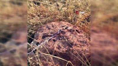 teroristler -  Teröristlerin yola tuzakladığı telsiz düzenekli bomba imha edildi