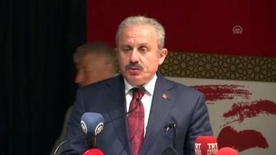TBMM Başkanı Şentop: 'Amasya Tamimi yeni milli meclisin temelinin atıldığı bir belgedir' - AMASYA