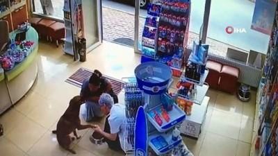 Bu görüntü yürekleri ısıttı... Patisinden yaralanan akıllı köpek eczacıdan böyle yardım istedi