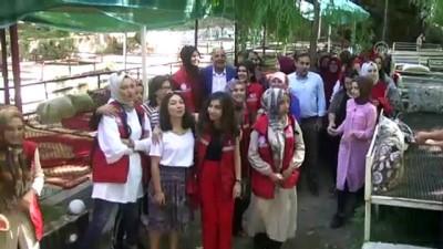 Gönüllü gençler Şemdinli'yi sevdi - HAKKARİ