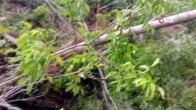 Bingöl'de heyelan: İki ev boşaltıldı