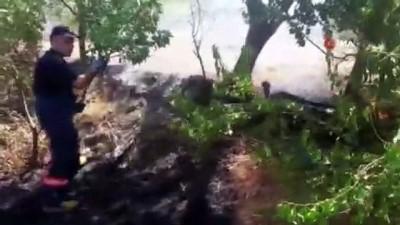 Siirt'te fıstık bağlarında çıkan yangında 200 dönüm alan zarar gördü