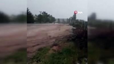 Nevşehir'de inekler sele böyle kapıldı