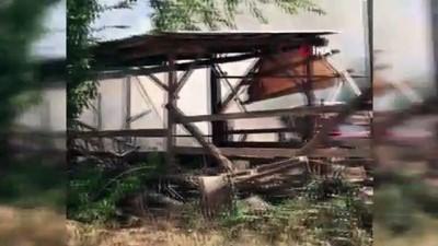 buyukbas hayvan -  Denizli'de yangın faciaya neden oldu hayvanlar yanarak telef oldu