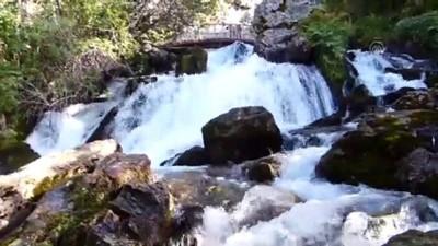 Su ve kuş seslerinin buluştuğu mağara - KONYA