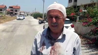 yasli adam -  Manavgat'ta sokak köpeklerinin saldırdığı yaşlı adam hastanelik oldu