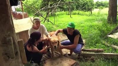 isaret dili - Çalıştıkları çiftlikte tatil yapıp Türk kültürünü öğreniyorlar - KASTAMONU