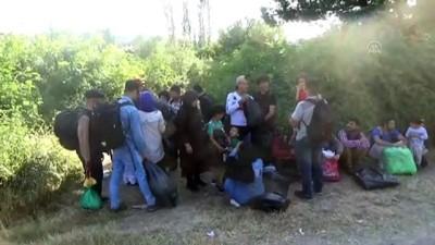 nani - 45 düzensiz göçmen yakalandı - ÇANAKKALE