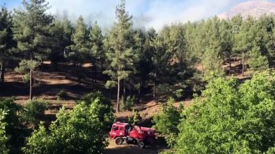 Orman yangını - KAHRAMANMARAŞ