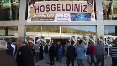 yatirimci -  Haciz şoku yaşayan Kuşadası-Efes Kongre Merkezi için seferberlik başlatıldı