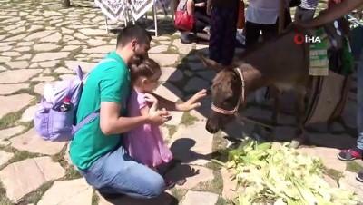 hayvancilik -  Başkent'te köy havasında şenlik...Bayramda köyüne gidemeyenler Altınköy'de hasret giderdi