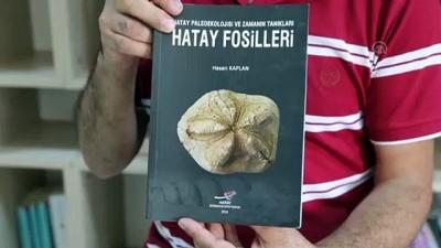 ogretmenlik - Biyoloji öğretmeninin 'fosil koleksiyonu' - HATAY