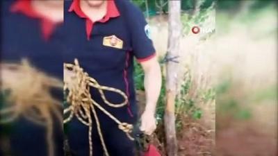 8 metrelik kuyuya düşen kediyi itfaiye ekipleri çıkarttı