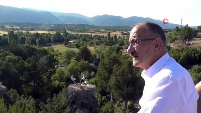 Başkan Bayındır: 'Beyşehir leylek cenneti konumuna büründü'
