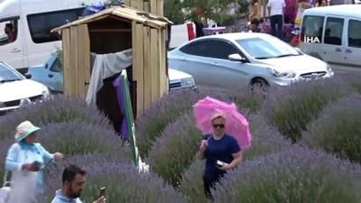 fotograf studyosu -  Türkiye'nin çiçek bahçesinde lavanta kokulu doğal fotoğraf stüdyosu