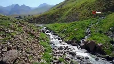 Beytüşşebap Dağları'ndan yaz manzaraları havadan görüntülendi