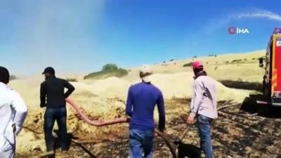 Elazığ'da 150 dönümlük alan kül oldu