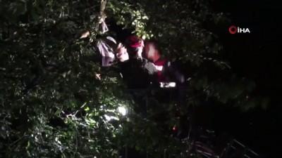 Armut toplarken yüksek gerilime kapılan şahıs hayatını kaybetti Video