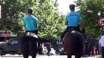 Harput, atlı jandarmaya emanet Video