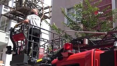 Güvercin mahsur kaldığı balkondan çıkmamakta ısrar etti