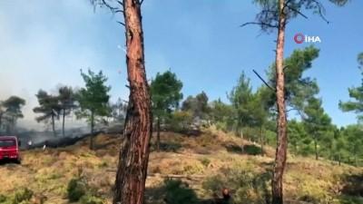 helikopter -  Aydın'da aynı bölgede iki ayrı orman yangını korkuttu