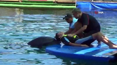 bedensel engelli -  Engelli çocuklar, yunus balıklarının öpücüğü ile moral buldular