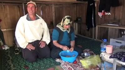 """TAB Başkanı Ziya Şahin: """"Bal üreticisi korunmalı"""""""